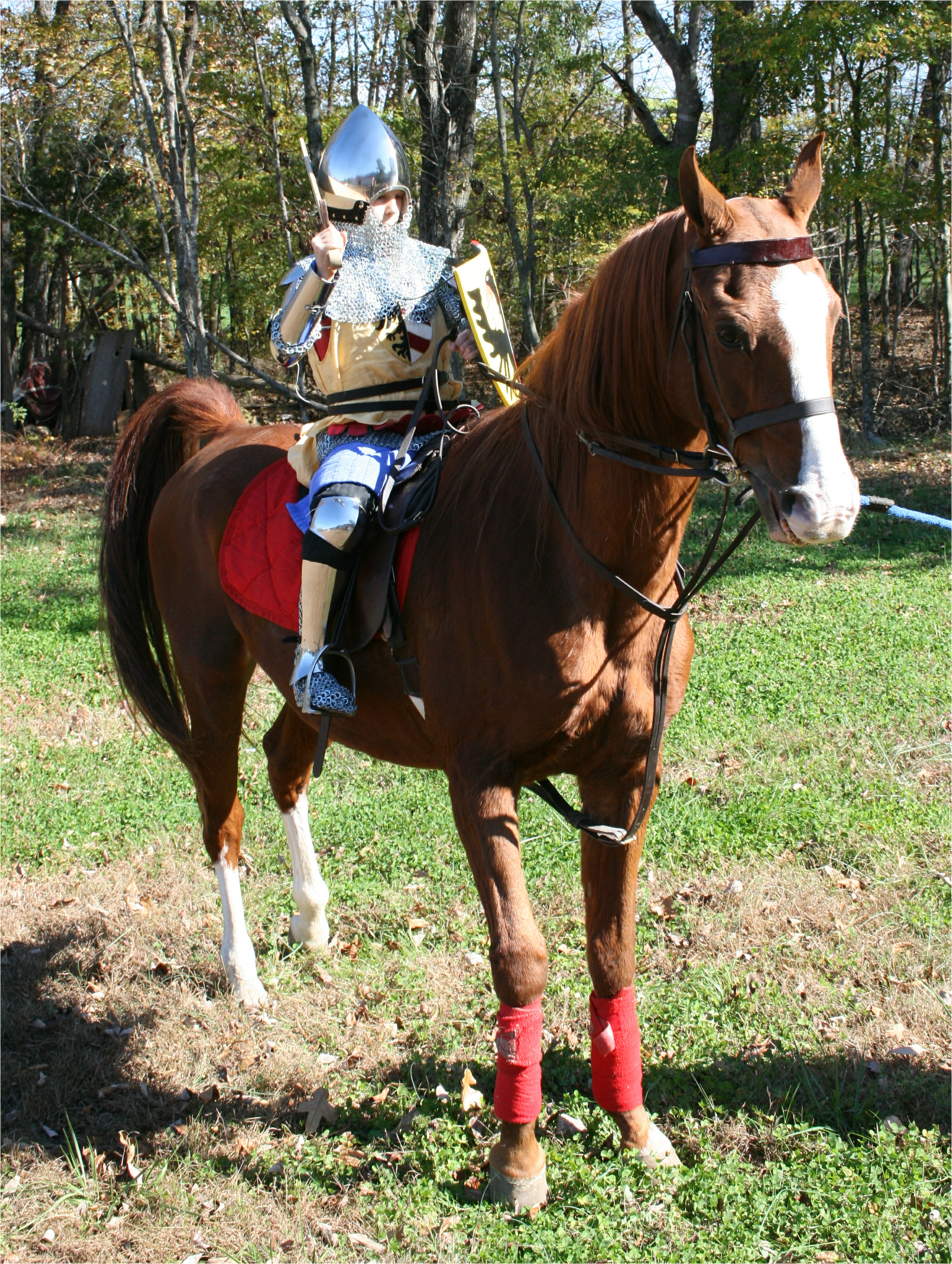 Armour - Geoffrey-1340-horseback-right-34